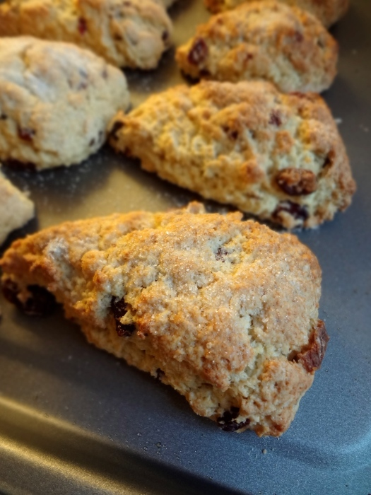 Fruit Scones: The Briarwood Baker
